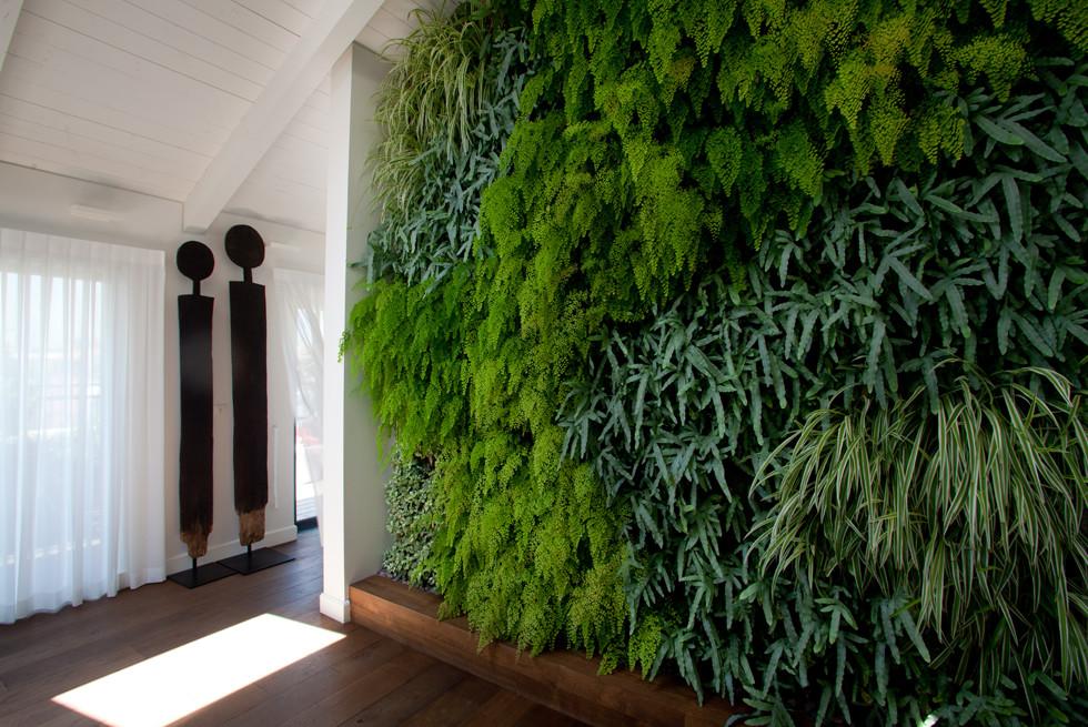 קיר ירוק מעוצב כאלמנט מרכזי בבית בנוה צדק, אדריכלים: אגידו הרשאגה ועמית שטרנברג, צילום: יעל אילן