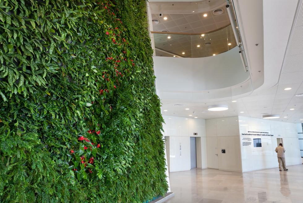 הקיר ירוק של ריצ'ארד בחלל הכניסה במכון ויצמן למדע ברחובות, אדריכל: מייזליץ כסיף, צילום: יעל אילן