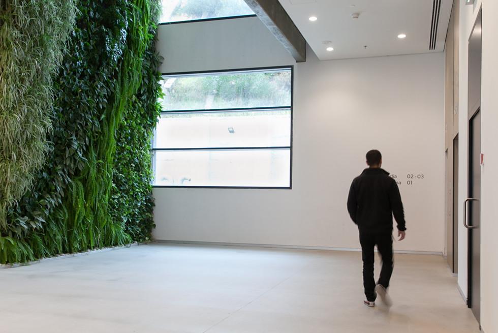 קיר ירוק פנימי בגובה 27 מ', חברת דקסל-פורמה, אדריכל: עידו לוי, צילום: יעל אילן